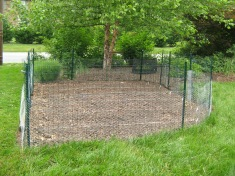 Fenced-in corn patch.